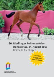 60. Riedlinger Fohlenauktion am 24. August 2017