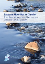 Executive Summary - Louth - Eastern River Basin District