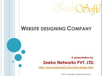 Website designing Company in Delhi - Professional Services