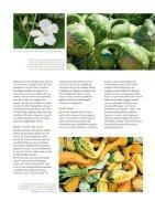 LandKind517-Flipbook1 - Page 7