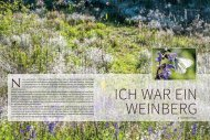 2017-3_WarWeinberg