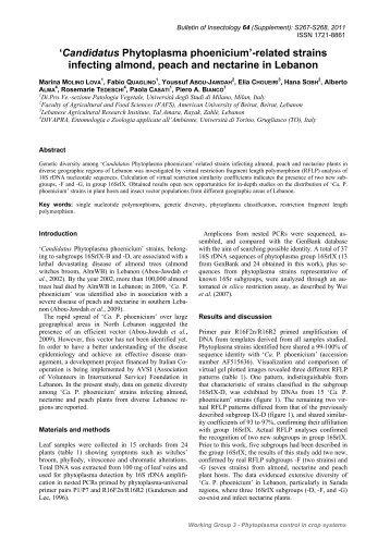 Candidatus Phytoplasma phoenicium - Bulletin of insectology