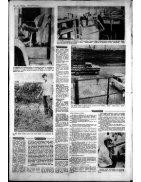 La Prensa (3) - Page 3