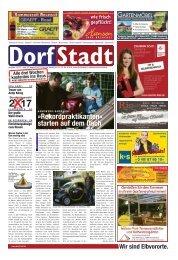 DorfStadt 11-2017
