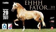 Eh Fator