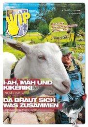WIP Stadtteil-Magazin Nr.3/17