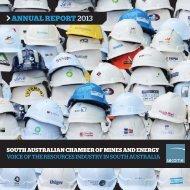 SACOME Annual Report 2012-13