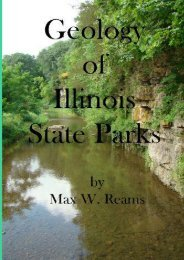 Geology of Illinois State Parks: A guide to the physical side of 28 must-see wonders of Illinois (Dr. Max W. Reams)