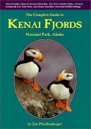 The Complete Guide to Kenai Fjords National Park