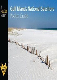 Gulf Islands National Seashore Pocket Guide (Falcon Pocket Guides Series)