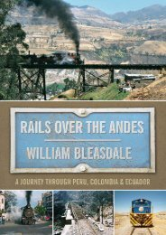 Rails Over the Andes