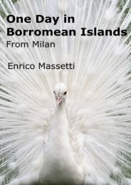 One day in Borromean Islands from Milan (One Day Trips from Milan) (Volume 2)