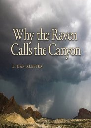 Why the Raven Calls the Canyon: Off the Grid in Big Bend Country (Charles and Elizabeth Prothro Texas Photography Series)