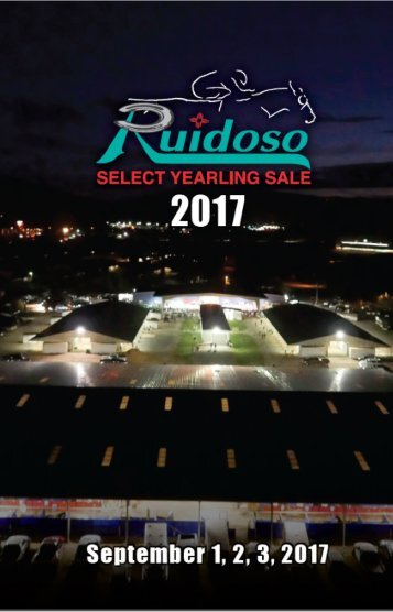 Rudioso Sale-aug2017-Rev1