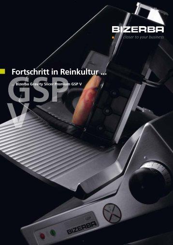 Prospekt GSP V