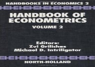 Handbook of Econometrics: Vol 2