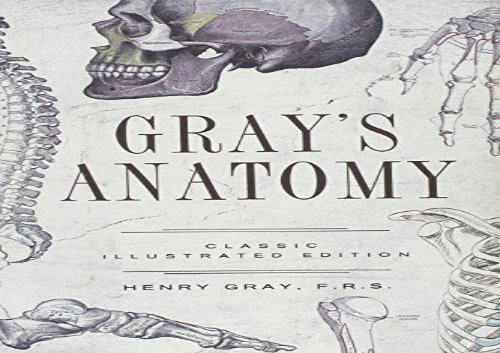Gray s Anatomy (Fall River Classics)