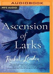 Ascension of Larks (Rachel Linden)