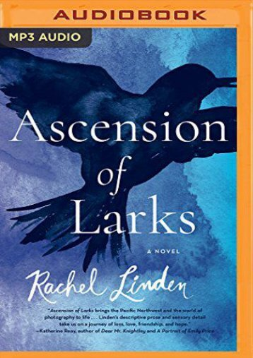 Ascension of Larks (Rachel Linden)
