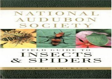 National Audubon Society Field Guide to Insects and Spiders: North America (National Audubon Society Field Guides (Paperback)) (National Audubon Society)
