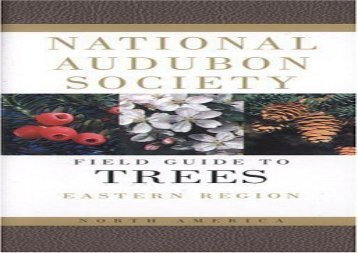 Audubon Society Field Guide to North American Trees:  Eastern Region (National Audubon Society)