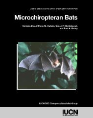 Biology and Ecology of Microchiropteran Bats - Bat Specialist Group
