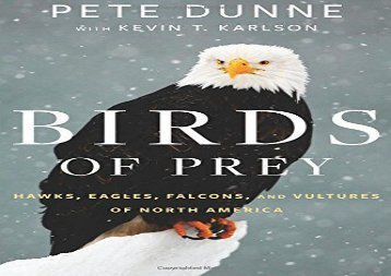 Birds of Prey: Hawks, Eagles, Falcons, and Vultures of North America (Pete Dunne)