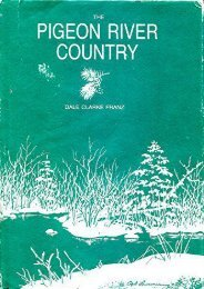 The Pigeon River Country: A Michigan Forest