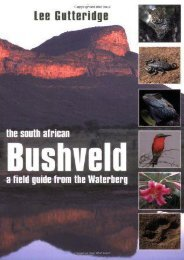 The South African Bushveld: A Field Guide from the Waterberg