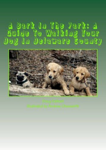 A Bark In The Park: A Guide To Walking Your Dog In Delaware County