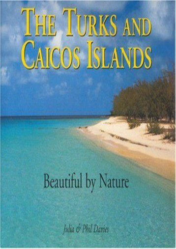 The Turks   Caicos Islands: Beautiful by Nature