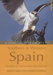 Where to Watch Birds in Southern   Western Spain