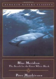 [Free] Donwload Blue Meridian: The Search for the Great White Shark -  For Ipad
