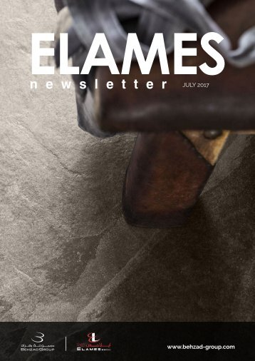 Elames Newsletter - July 2017