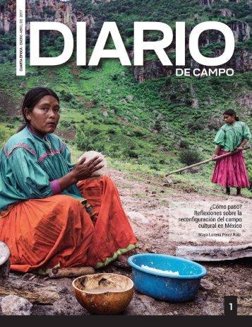 Diario Campo 1. Cuarta Época