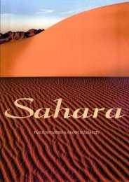 Sahara: An Immense Ocean of Sand