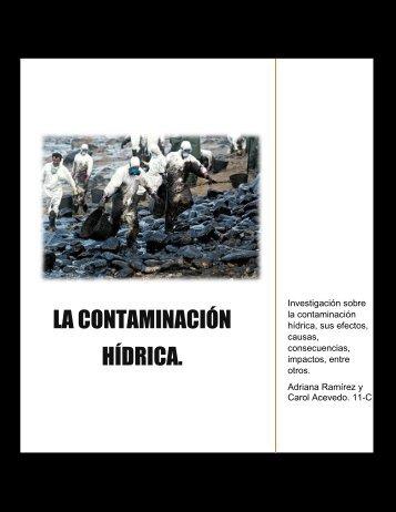Revista contaminación hídrica. 11-C