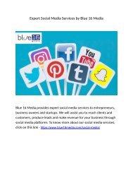 Expert Social Media Services by Blue 16 Media