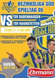 20170812 Fuggermärkler TSV 1862 Babenhausen - TSV Ziemetshausen