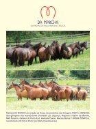 Revista TOP MARCHADOR MARCHA PICADA - Page 4