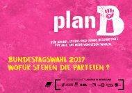 Bundestagswahlen 2017: Wofür stehen die Parteien?