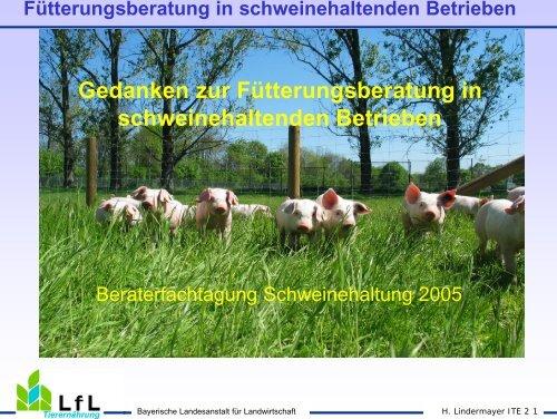 Gedanken zur Fütterungsberatung in schweinehaltenden Betrieben