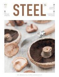 Steel nr2 2017