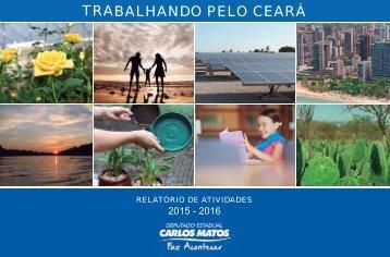 Relatório de atividades Carlos Matos - 2015-2016