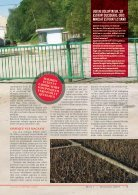 MALINAR MAGAZINE TEMPLATE - Page 5
