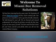 Bee Removal Company  in Florida