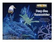 NeS Lesson #1 - Deep Sea Communities Slideshow Rvsd72317