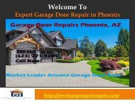 Scottsdale Garage Door Repair.output
