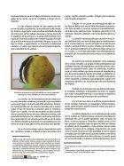 Revista10.1-min - Page 6