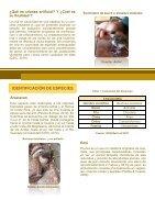 Protocolo de incubación y crianza- Piscilago - Page 6